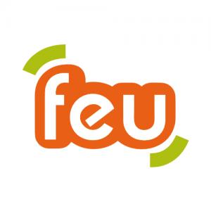 logo feu de lille